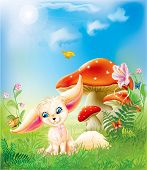 pic of fairy-mushroom  - fairy happy baby fox on green grass with mushrooms and flowers - JPG
