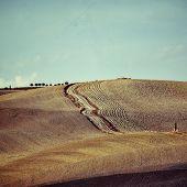 picture of senesi  - Idyllic Tuscany rural landscape near Pienza Vall d - JPG