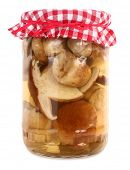 image of porcini  - Boletus edulis porcini mushrooms preserved in jar - JPG