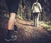 stock photo of pole  - Couple with hiking poles walking in a forest  - JPG