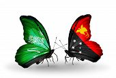 picture of papua new guinea  - Two butterflies with flags on wings as symbol of relations Saudi Arabia and Papua New Guinea - JPG