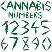foto of medical marijuana  - cannabis numbers against white background - JPG