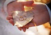 image of birching  - Bride and groom are holding birch leaf with gold wedding rings