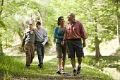 stock photo of pre-teen boy  - Happy Hispanic family with two boys walking along trail in park - JPG
