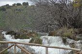 picture of flood  - Mountain stream flood - JPG