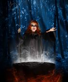 image of witches cauldron  - Young witch with cauldron at night forest - JPG