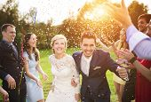 image of married couple  - Full length portrait of newlywed couple and their friends at the wedding party showered with confetti in green sunny park - JPG