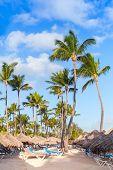 stock photo of atlantic ocean beach  - Palm trees umbrellas and sunbeds on a sandy beach - JPG