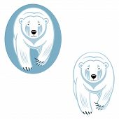 image of north-pole  - Polar bear  - JPG