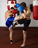 stock photo of kickboxing  - Two kickbox fighters training in the gym - JPG