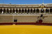 picture of bullfighting  - Spanish bullfight arena in Seville called Plaza de Toros - JPG