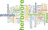 image of herbivore animal  - Background concept wordcloud illustration of herbivore - JPG
