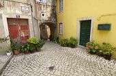 image of cobblestone  - Street paved with cobblestones in Sintra - JPG