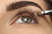 picture of eyebrows  - Make - JPG