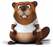 image of beaver  - Beaver with a white tshirt - JPG