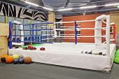 picture of boxing ring  - The image of boxing ring - JPG