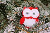 image of snowy owl  - Christmas owl on a snowy tree in winter - JPG