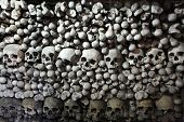 pic of skull bones  - Human bones and skulls in the Sedlec Ossuary near Kutna Hora - JPG