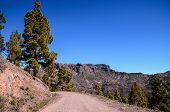 pic of dirt road  - Long Straight Dirt Desert Road disappears into the Horizon - JPG