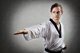 image of karate-do  - Image of a teakwon do master with karate chop - JPG
