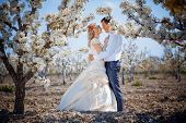 picture of wedding couple  - Wedding couple in spring nature - JPG