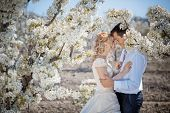 image of wedding couple  - Wedding couple in spring nature - JPG