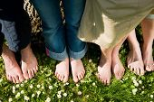 Healthy feet series: feet of men and women of different ages in the grass with daisies, seen from ab