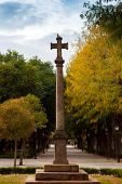 Cross of the fallen, in commemoration of the dead of the Spanish Civil War poster