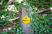 Yellow Hiking Trail Mark On A Wooden Stump In Nature. Sign Translation: Wanderweg - Trail, Hiking Pa poster