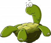 stock photo of turtle shell  - Cartoon turtle on the back vector illustration - JPG