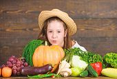 Kid Farmer With Harvest Wooden Background. Family Farm Festival Concept. Farm Activities For Kids. T poster