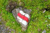 White Red Tourist Sign Painted On A Rock In Nature. The Marks Help For Orientation On A Hiking Trail poster