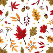 Autumn Foliage Hand Drawn Vector Seamless Pattern. Different Tree Leaves And Berries Decorative Text poster