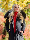 Woman Long Blonde Hair Wear Stylish Outfit With Parka. Modern Outfit For Youth. Girl In Warm Coat St poster