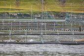 Salmon Fishing Farm Pools In Faroe Islands Fjords. Aquaculture Industry poster