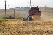 Harvester Combine Autumn Graine Wheat Farmer Worker Plantation Technology Green Field poster