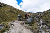 Two Donkeys Carrying Equipment And Material On A Mountaineering Expedition In The Andes In Peru poster