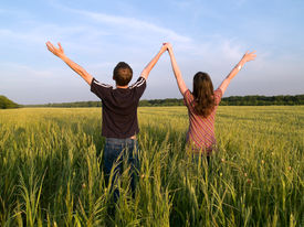 stock photo of hands up  - Young Couple in Field Holding Hands Up Rear View - JPG