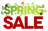 foto of ladybug  - Spring sale design - JPG