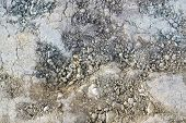 foto of loam  - full frame natural background with multicolored dry loam - JPG