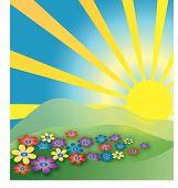 Good Morning Sunrise poster