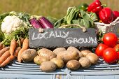 image of aubergines  - Organic vegetables on a stand at a farmers market with a sign reading locally grown - JPG