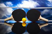 picture of ping pong  - Ping pong - JPG