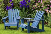 pic of lawn chair  - Blue back yard lawn chairs surrounded by a garden of flowers - JPG