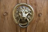 Постер, плакат: Doorknob Lion