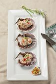 image of scallop-shell  - A close up of tuna salad mixed with diced red bell pepper and topped with chives served on scallop shells with a side of freshly diced relish - JPG