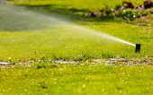 image of sprinkler  - Gardening - JPG