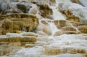 image of mammoth  - beautiful mineral deposits in mammoth hot springs yellowstone national park - JPG
