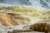 stock photo of mammoth  - beautiful mineral deposits in mammoth hot springs yellowstone national park - JPG