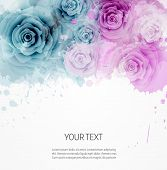 image of blue rose  - Abstract watercolor background in pink and blue colors with roses - JPG